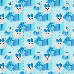 "Maltese - Blue Box -  abt 4"""