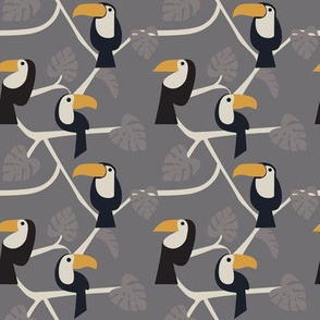 Toucans on grey