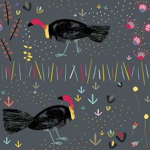 Australian Brush Turkey by Mount Vic and Me