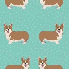 Whole body Corgi Dogs on Green Background