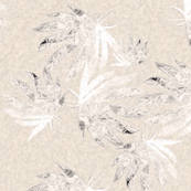 Cream On Cream Indica Leaves