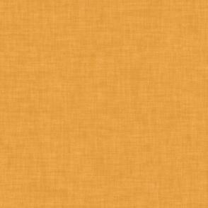 Three Brooms Textured #f3a33b