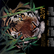 2019 Tiger Calendar