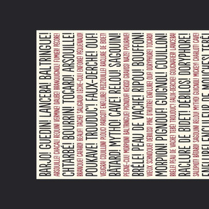 ★ PARDON MY FRENCH! ★ French Slang Tea Towel / Collection : French Style :) Words & Breton Stripes Prints