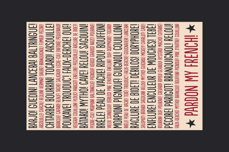 ★ PARDON MY FRENCH! ★ French Slang Tea Towel / Collection : French Style :) Words & Breton Stripes Prints fabric by borderlines on Spoonflower - custom fabric