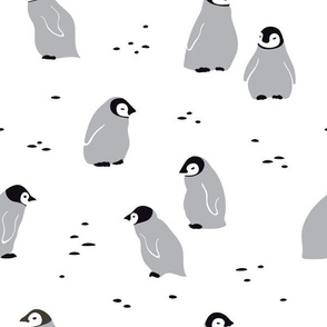 Emperor penguin chicks, large