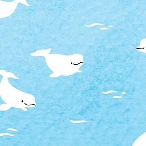 Beluga Whales, large