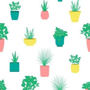 Bright Pastel Herb Garden