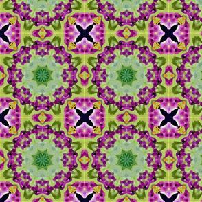 Purple Gathering
