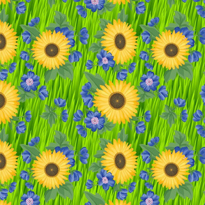 Field of Yellow and Blue Flowers