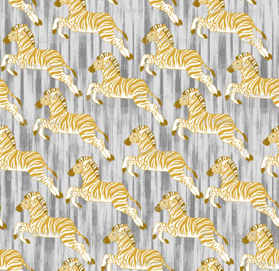 Golden Zebra Herd