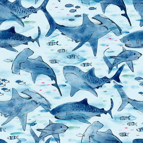 Swimming with the Sharks - © Lucinda Wei
