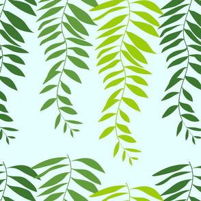 pepper tree branches and leaves