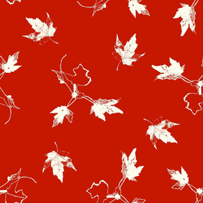 White Maple Leaves on Red