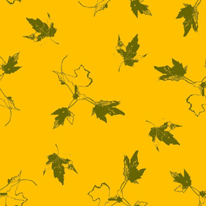 Green Maple Leaves on Yellow