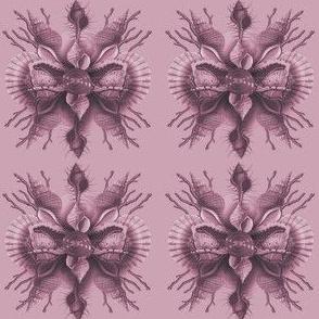 Shell Border Violet