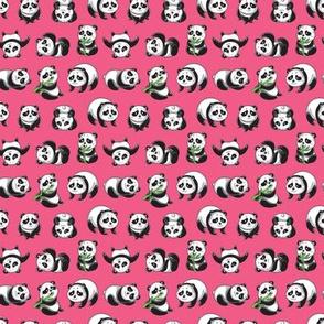 Pandamonium_pink