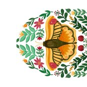 Rorange-moth-2_shop_thumb