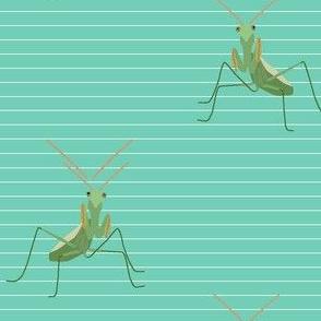 Praying Mantis is Watching