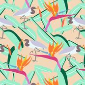 heron joy