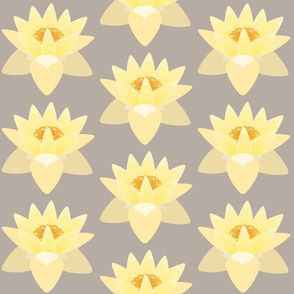 lotus warm grey dk