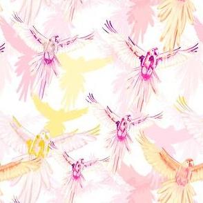 Wildwood Birds Pink