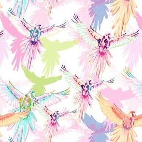 Wildwood Birds