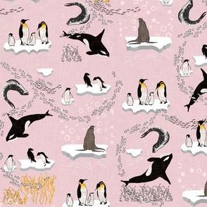 Antics in Antartica (pink)