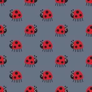 Ladybird on grey