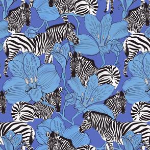 zebras blue