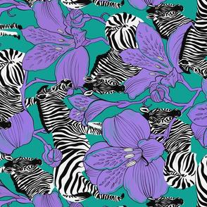 zebras green rotate