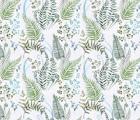 Ferns fabric by agakobylinska on Spoonflower - custom fabric