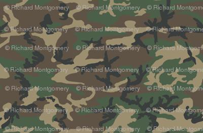 Sixth Scale M81 Woodland Camo