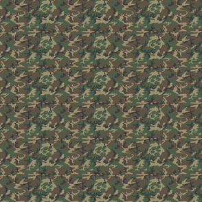 Sixth Scale M81 Woodland Camo