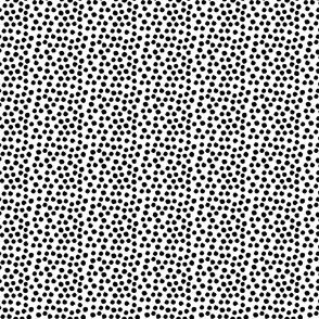 "4"" Black Dots"