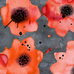 poppies on dark gray large scale