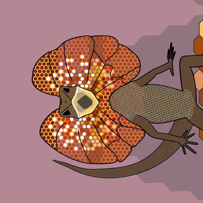 Frilly mad! Frilled neck lizard