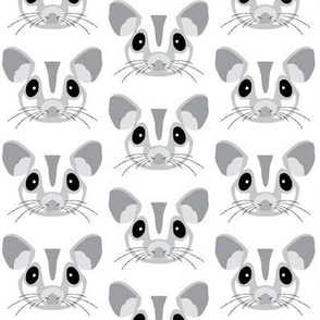 grey sugar gliders without outlines