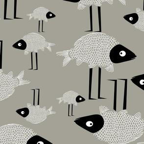 Carp Birds