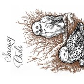 Rsnowy-owls-color-spoonflower_shop_thumb
