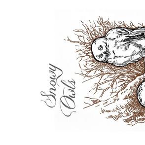 Snowy Owls by Stephanie Smith