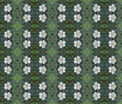 wild white rose fabric by ruthjohanna on Spoonflower - custom fabric