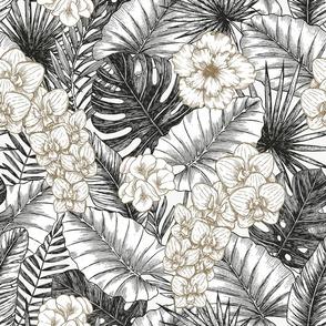 Silver tropic