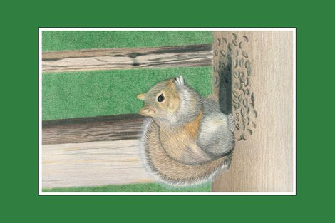 Rseedy-squirrel-tea-towel_shop_preview