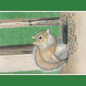 Rseedy-squirrel-tea-towel_shop_thumb