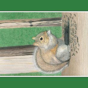 Seedy Squirrel Tea Towel