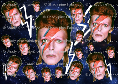 bowies in space