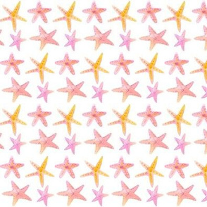 starfish pink mini