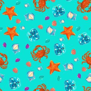 summer beach starfish and crab