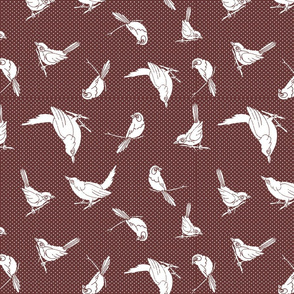 garden birds shadows Maroon